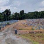 Em um mês, Amazonas vê média móvel de mortes saltar de 15 para 118.